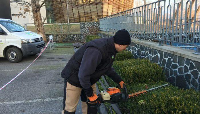 Zahrady - jplcz.com - Údržba zeleně