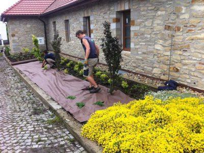 Zahrady - jplcz.com - Výsadba keřů