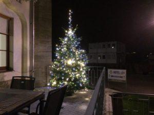 Veřejná zeleň - jplcz.com - Vánoční osvětlení
