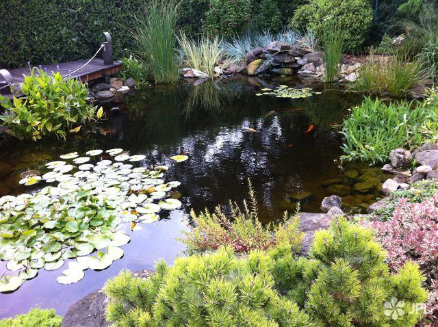 Jezírka - jplcz.com - Okrasné zahradní jezírko - inspirace