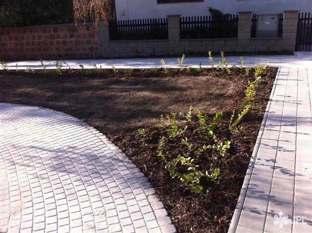 Veřejná zeleň - jplcz.com - Obnova obce po povodni, výsadba stromů a keřů, úprava terénu
