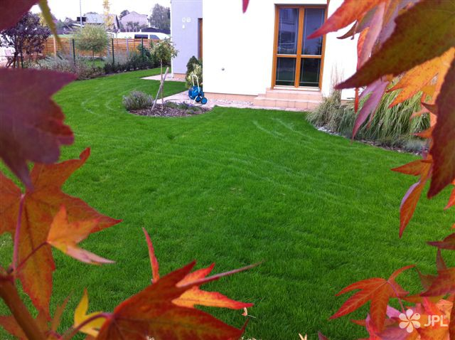 Travní koberce, Zahrady - jplcz.com - Hnojení trávníků, sečení trávníků, vyfoukání listí, stříhání keřů a živých plotů, tlakové čištění chodníků