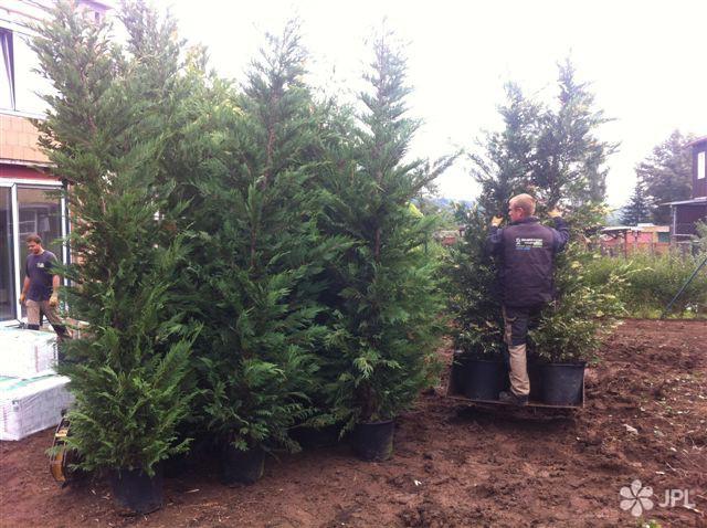 Zahrady, Závlahové systémy - jplcz.com - samozavlažovací systém Hunter, položení travního koberce