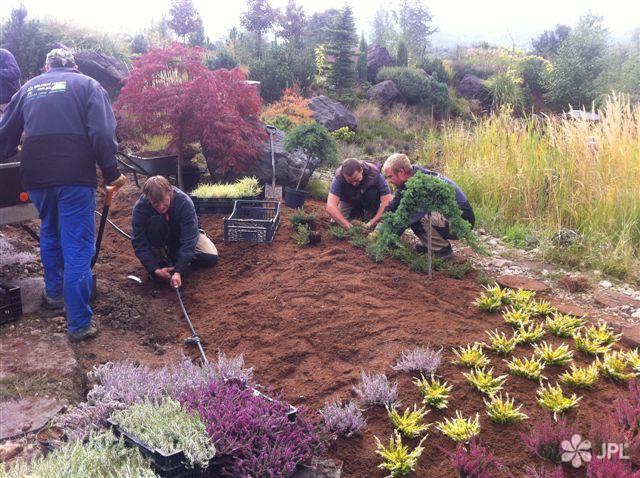 Jezírka, Zahrady - jplcz.com - Regenerace zahrady s koupacím jezírkem
