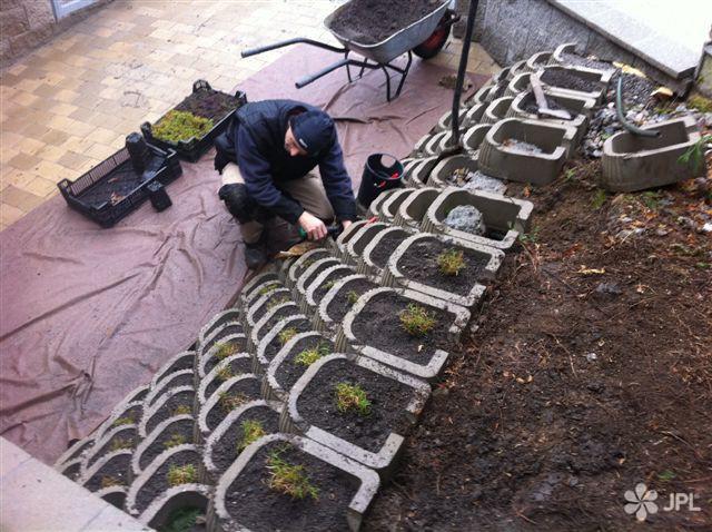 Travní koberce, Zahrady - jplcz.com - Kompletní realizace zahrady