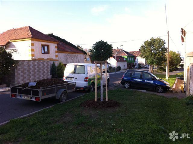 Veřejná zeleň - jplcz.com - Výsadba stromů a keřů, rostlin a parkového trávníku
