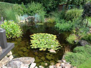 Jezírka, Zahrady - jplcz.com - Údržba zeleně
