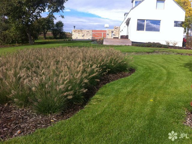 Travní koberce, Veřejná zeleň - jplcz.com - Údržba zeleěe, trávníků, zelených střech