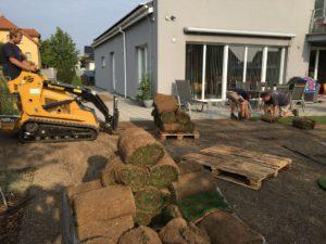 Jezírka, Travní koberce, Zahrady - jplcz.com - Realizace zahrady Praha, položení travních koberců a terénní úpravy