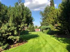 Údržba zahrad srpen - září