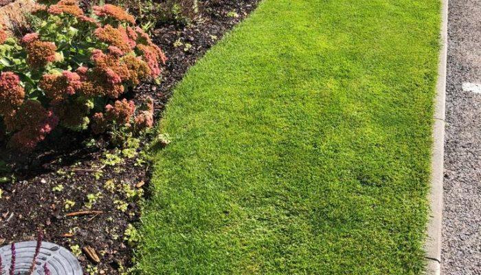 Podzimní údžby zahrad